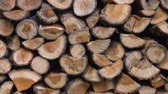 Pile of firewood, Rhineland-Palatinate, Germany, Europe