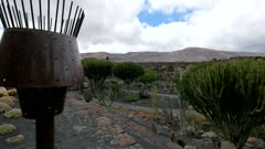 Jardin de Cactus (Cactus Garden) in Guatiza, Lanzarote, Canary Islands, Spain, Atlantic, Europe