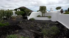 Fundacion Cesar Manrique near Tahiche, Lanzarote, Canary Islands, Spain, Atlantic, Europe