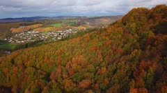 Aerial view of an autumn forest, Kastel-Staadt, Rhineland-Palatinate, Germany, Europe
