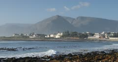 Kommetjie beach, Cape Town, Western Cape, South Africa, Africa