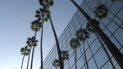 View of contemporary architecture and palm trees on Hollywood Boulevard, Hollywood, Los Angeles, California, United States of America, North America