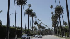 View of palm trees lining Beverly Drive, Beverly Hills, Los Angeles, California, United States of America, North America