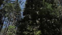Travelling through Yosemite Valley and El Capitan, Yosemite National Park, UNESCO World Heritage Site, California, United States of America, North America