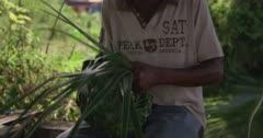Basket weaver, Grand Anse Beach, Grenada, West Indies, Caribbean, Central America
