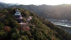 Cherry blossom at Iwakuni Castle, Yamaguchi Prefecture, Japan, Asia