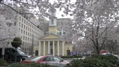 View of St. John's Episcopal Church framed by spring blossom, Washington DC, United States of America, North America