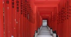 Torii gates at Hie shrine in central Tokyo, Japan, Asia