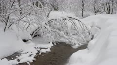 Beautiful winter landscape with snow covered trees and frozen forest river.