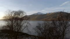 Trees at the Edge of a Scottish Loch