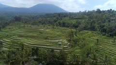 Rice Terraces in Asia with a Mountainous Landscape