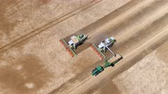Combine Harvesters Working During A Wheat Harvest
