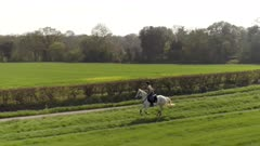 Horse Rider in the Countryside Trotting
