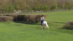 Horse Rider in the Countryside Cantering