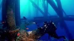 Oil Rig Platform Ellen 12-18