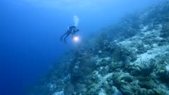 Seascape with diver in turquoise water of coral reef in Caribbean Sea / Curacao with fish, coral and sponge