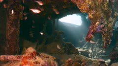 Ship wreck in turquoise water of coral reef in Caribbean sea, Curacao with Glassy Sweeper and sunbeams