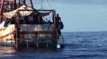 Longline For Shark Fishing