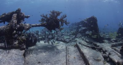Extra wide,fisheye view,Travel Over Sugar Wreck,Bahamas