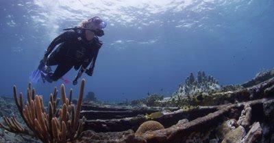 Divers Swim On Shipwreck