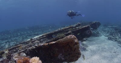 Diver Swims Around shipwreck