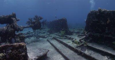 Diver Swims Around shipwreck