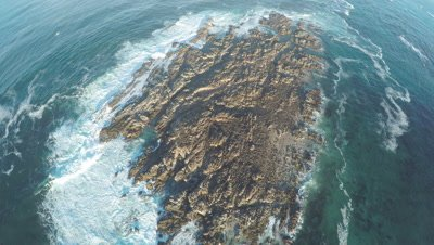 Aerial shot of a Brown Fur Seal colony on Geyser Rock, off the South African coast