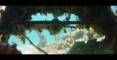 Plane Wreck on the sandy ocean floor in the Bahamas