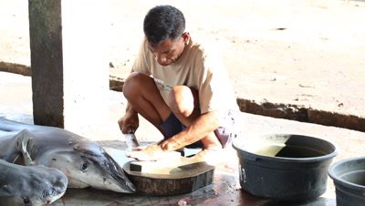 Fisherman sharpening knife at fish market