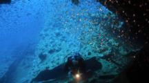 Diver With Torch Approaches Wreck With School Of Small Fish
