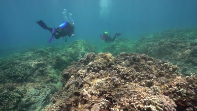 Diver pair swimming away over shallow coral reef