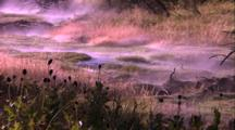 Thermal Activity, Hot Water Stream Meanders Over Grassy Clumps