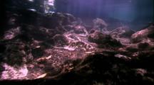 Entering Jellyfish Lake