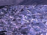 Muir Glacier Field