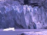 Muir Glacier Face