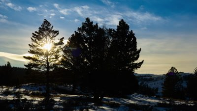Timelapse of sunset and clouds moving over trees in Yellowstone National Park in winter.