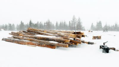 Time Lapse of snow blowing among wood logs
