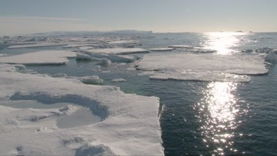 View from ship on Icefloes in the Ross sea, Antarctica
