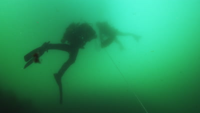 Work divers at scallop farm.