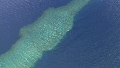 View of shallow reef below surface
