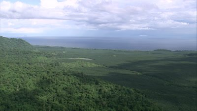 travelling over palm oil plantation with coast in background, camera gets close to palms below and approaches coast.