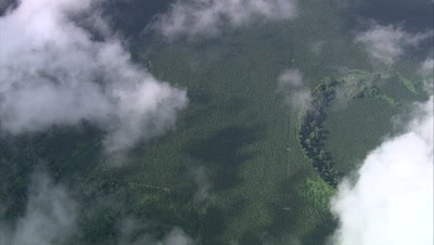 High angle view of Palm Oil plantation through clouds
