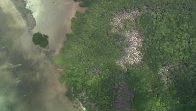 High angle aerial of shallow coral reef near coast
