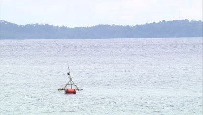 View of Fish Aggregation Device near coast. zoom out