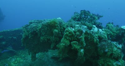 Pan over turret gun covered by coral growth
