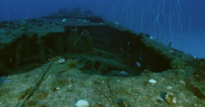 Traveling over wreck and along edge, coral growth along sides.