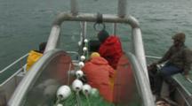 Bristol Bay Salmon Fishery - Fishermen Pick Fish From Gillnet