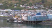 Kodiak Crab Festival Near Dock