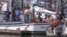 People In Harbor During Kodiak Crab Festival