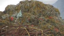 Huge Pile Of Gear, Nets, Debris, Alaska Crab Fisheries - Dutch Harbor Unalaska Alaska- Mountain Of Crab Line Salvaged From Crab Pots, Trash